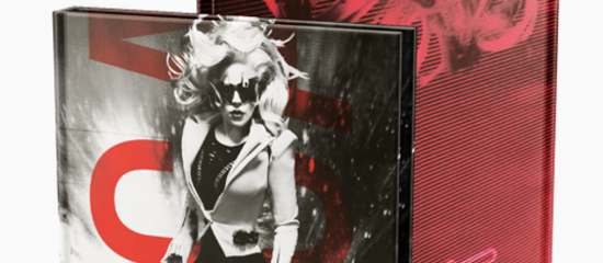 Portfolio « Lady Gaga Perfect »
